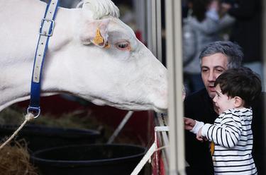 第57屆法國國際農業博覽會開幕