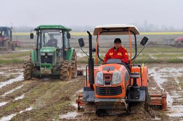 重庆市出台多项措施春耕春播防止因疫返贫