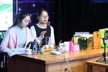 """云浮市4所學校獲評""""廣東省青少年科技教育創新團隊"""