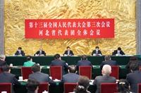 王滬寧參加河北代表團審議