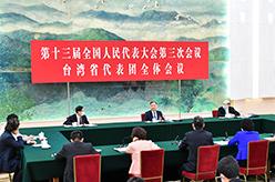 汪洋參加臺灣代表團審議