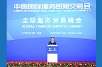 韓正出席2020年中國國際服務貿易交易會全球服務貿易峰會