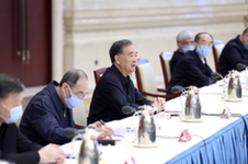 汪洋出席各民主黨派中央脫貧攻堅民主監督工作總結會並講話