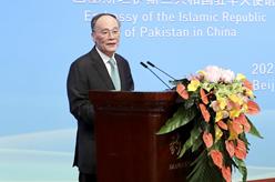 王岐山出席慶祝中國-巴基斯坦建交70周年招待會