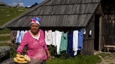 探秘斯洛文尼亞古老高原牧場