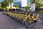 共享單車指導意見引熱議 自行車將回歸城市?