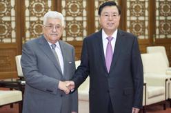 張德江會見巴勒斯坦國總統阿巴斯