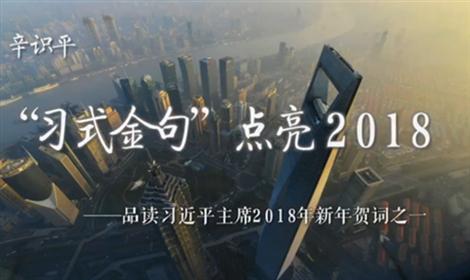 """辛識平:""""習式金句""""點亮2018"""