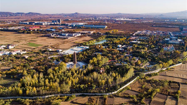 城郊荒地變身生態公園