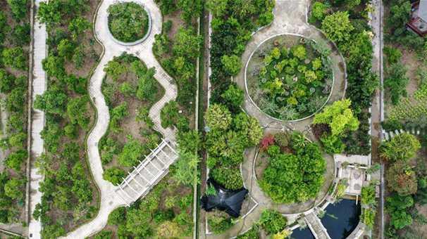水清岸美産業興——江蘇南通小康路上的綠色實踐