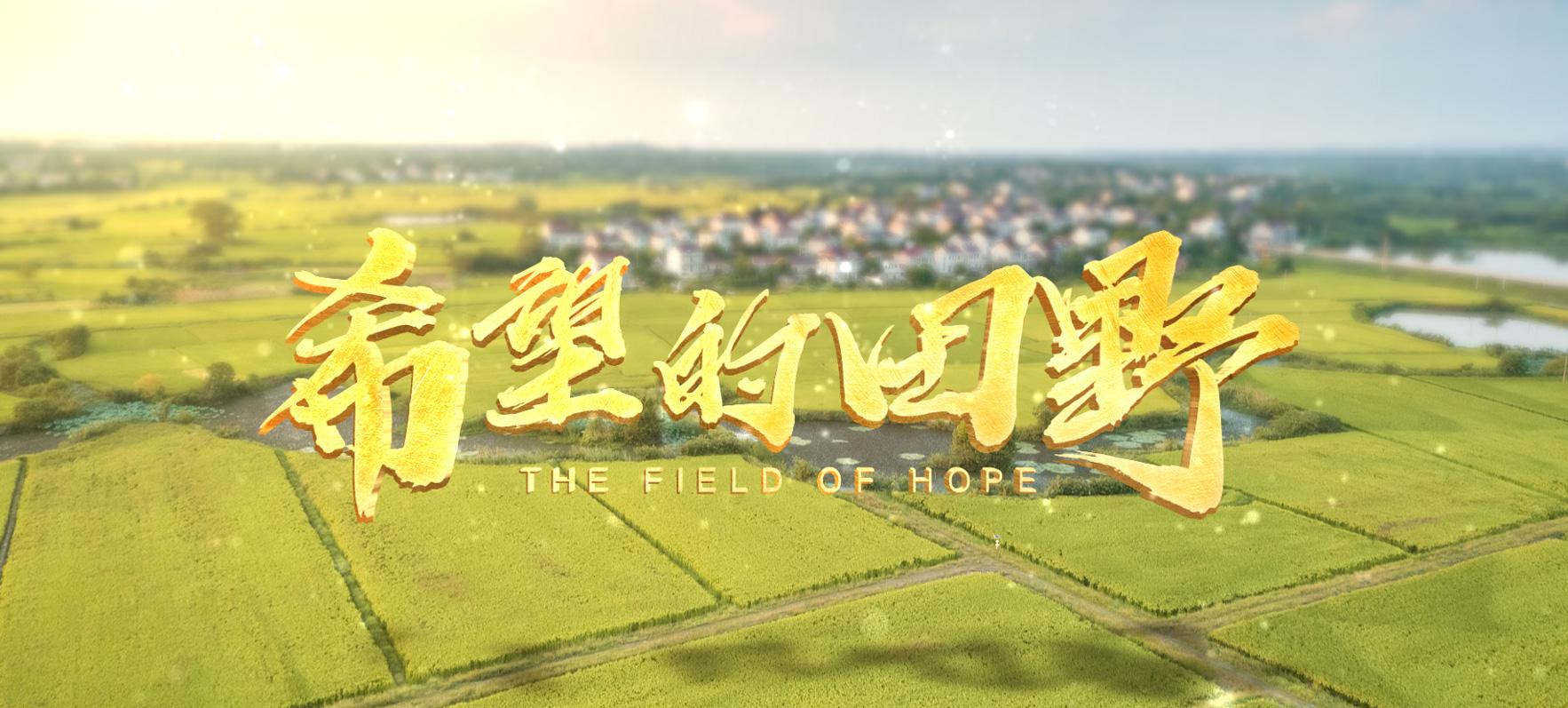 微視頻:希望的田野