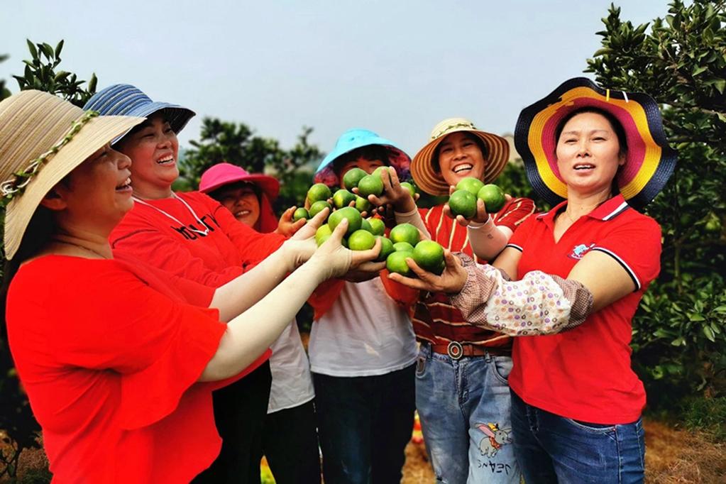 湖北宜昌2021年中國農民豐收節將在當陽舉行