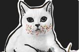 原創公益廣告:動物多彩世界