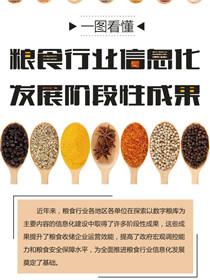 一圖看懂我國糧食行業信息化發展成就
