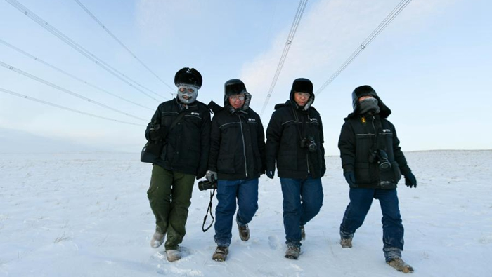 寒冬巡線保供電