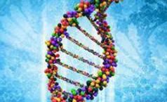 陳曉亞:生命的傳遞 分子遺傳