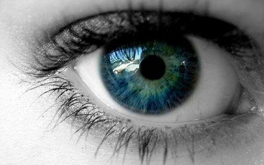 日本確認移植角膜內皮細胞安全有效