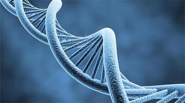 科普:基因檢測如何測出你的未來