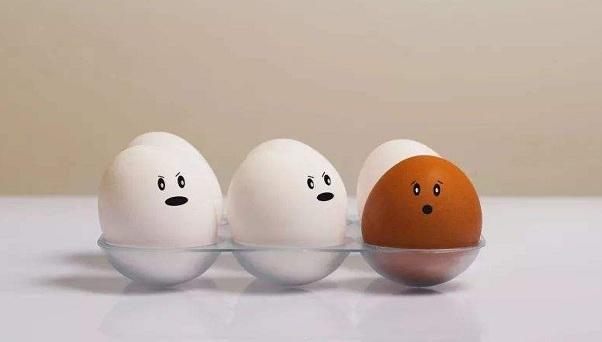 雙黃蛋能孵出兩只小雞嗎?