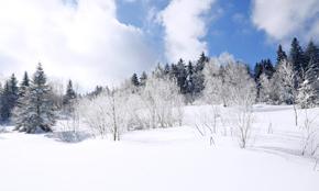 一分为二看降雪