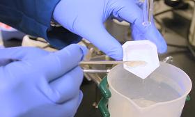 有機小分子 向催化更深處探索