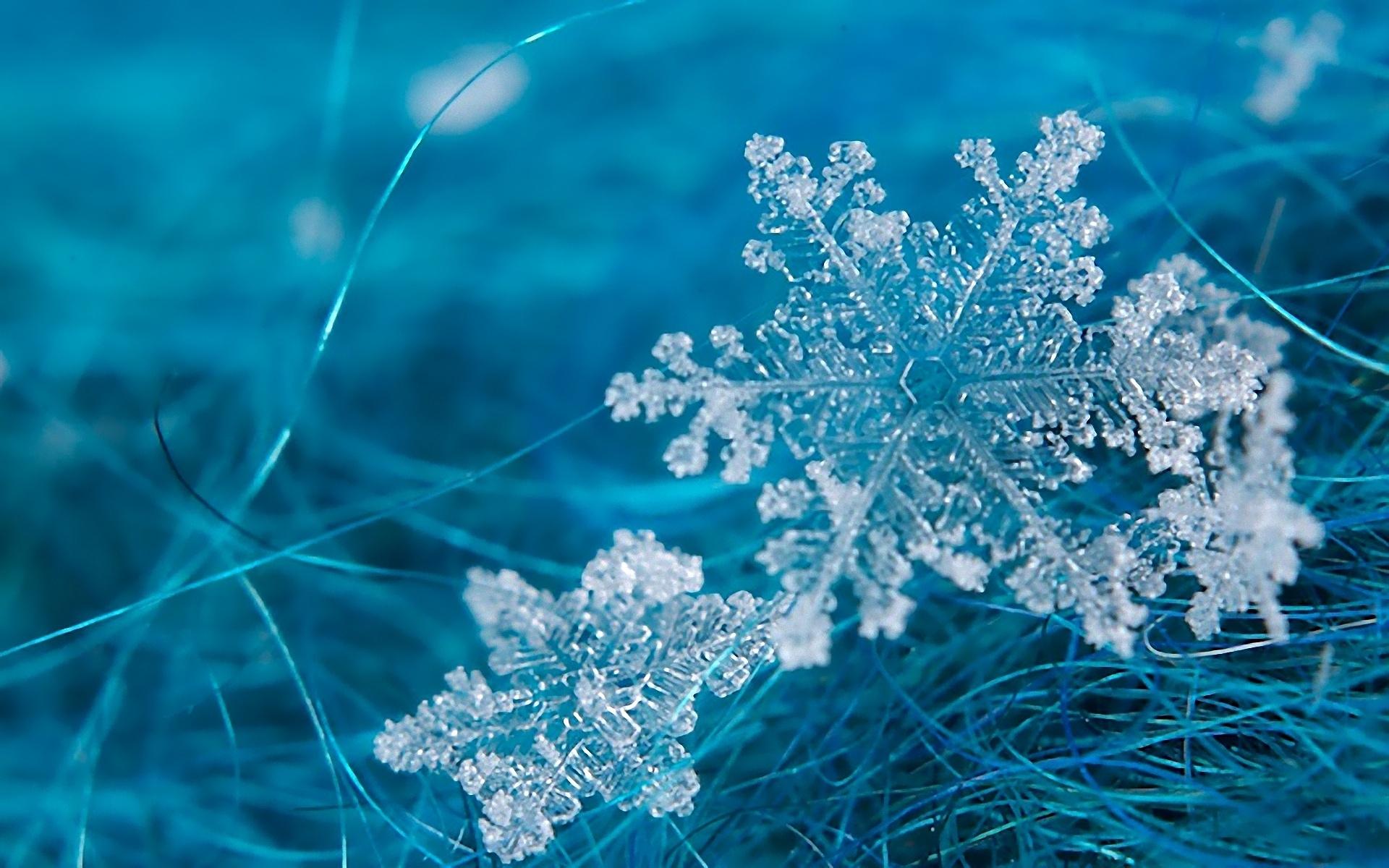 關于寒潮的小知識你get了嗎?