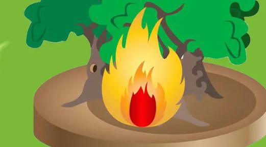 引发森林火灾的自然火源