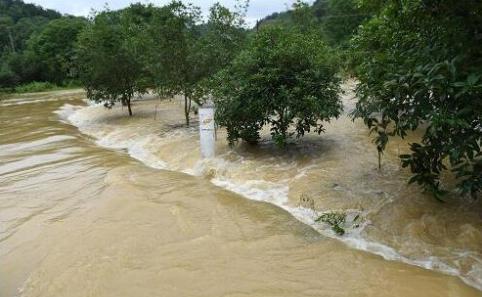 真人演示遇到洪水如何自救