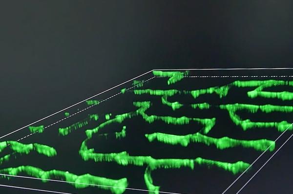 纳米绿色印刷技术改变传统印刷产业