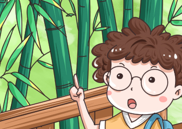 竹子为什么长不粗?