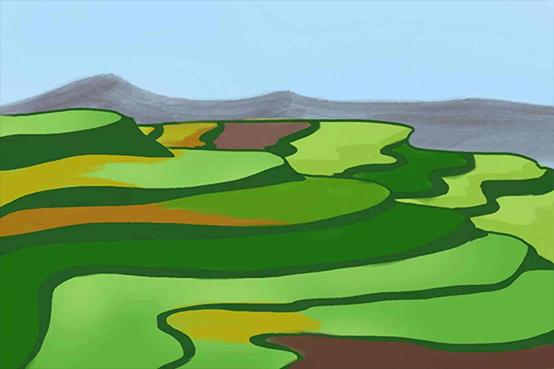 农耕智慧的产物——梯田
