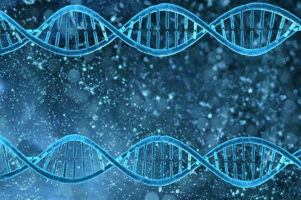快速組裝全基因組在個人電腦實現