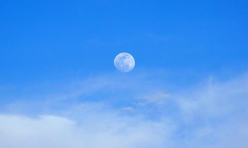 为什么有时候白天也能看到月亮?