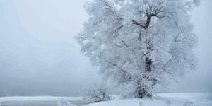 【傳統文化•二十四節氣】立冬