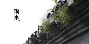 【傳統文化•二十四節氣】雨水