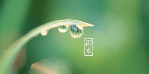 雨水:好雨知時節 當春乃發生
