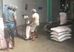 中國中糧集團首次進口印度非巴斯馬蒂大米