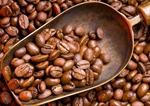 通訊:更多巴西精品咖啡有望飄香中國