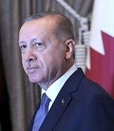 專訪:期待為土中戰略合作關係發展注入新動力——訪土耳其總統埃爾多安