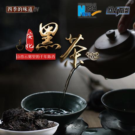 安化黑茶:峰巒雲霧裏的千年陳香