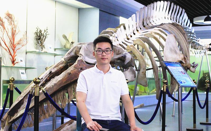 解析鯨豚多次擱淺浙江沿海原因及救援要求
