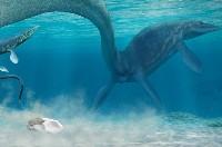 """科學家確認白堊紀""""海洋霸主""""滄龍的蛋化石"""