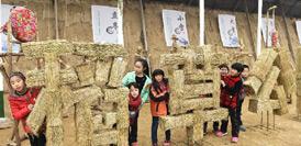 山東鄒平:冬季農場快樂鄉村遊
