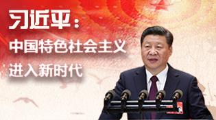 中國特色社會主義進入新時代