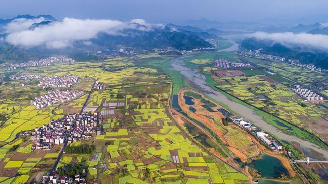 厚植生態文明 耕耘美麗中國