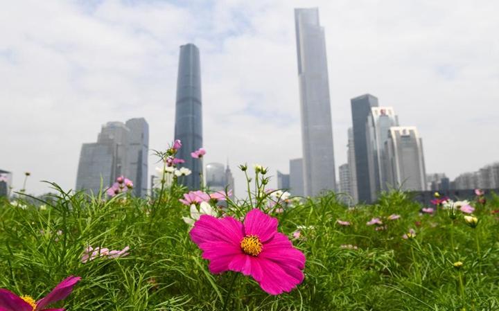 新華微評·學習路上:改革開放再出發
