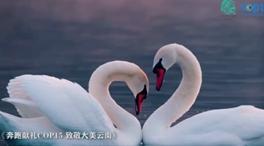 飛越萬古江河湖海 俯瞰綠色地球家園