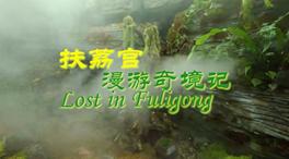 COP15|扶荔宮漫遊奇境