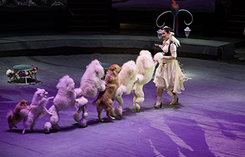 Circus art festival held in Moscow, Russia