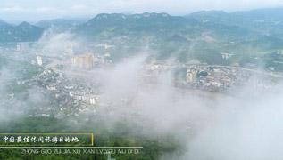 溫泉之城 長壽石阡